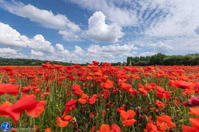 Professional Warwickshire & Cotswold Landscape Photographer