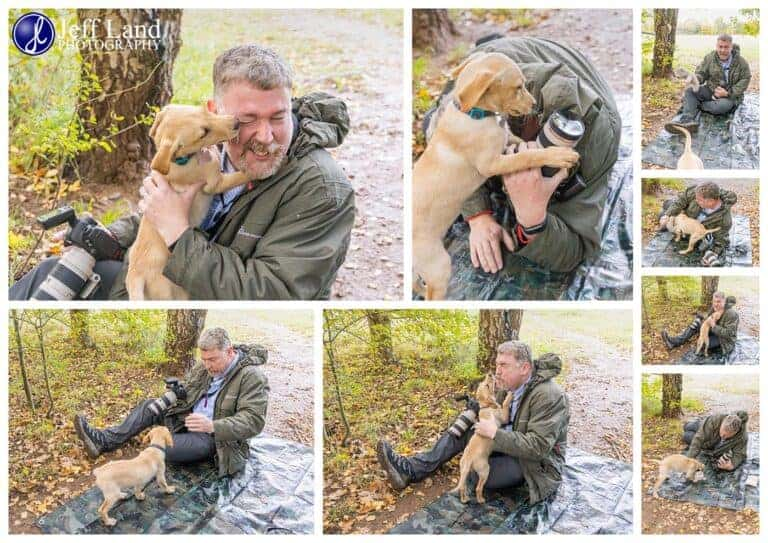 Professional Dog Portrait Photographer Stratford upon Avon